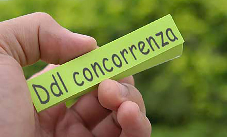 DDl-concorrenza_1240x750